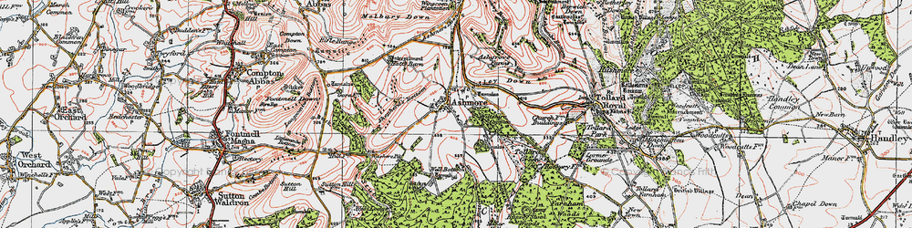 Old map of Woodley Down in 1919