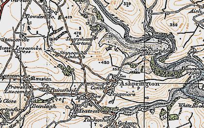 Old map of Ashprington in 1919