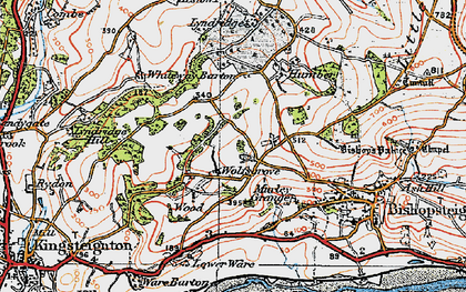 Old map of Wolfsgrove in 1919