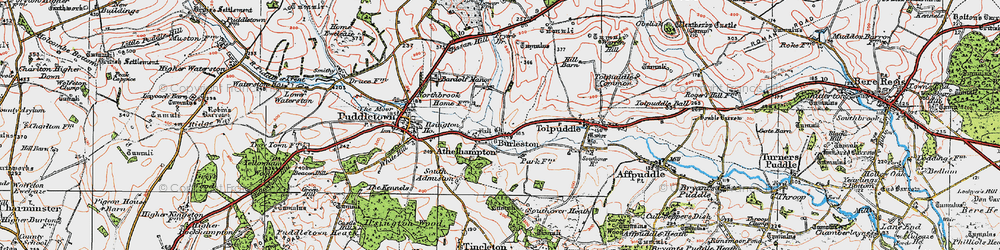 Old map of Athelhampton in 1919