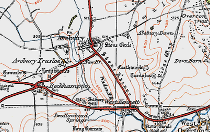 Old map of Avebury Down in 1919