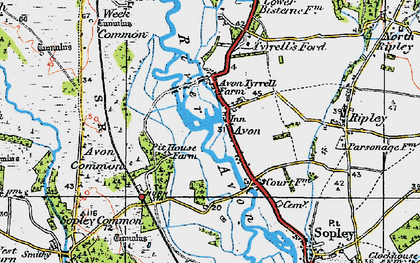 Old map of Avon Common in 1919