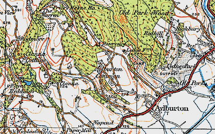 Old map of Aylburton Common in 1919