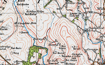 Old map of Babeny in 1919