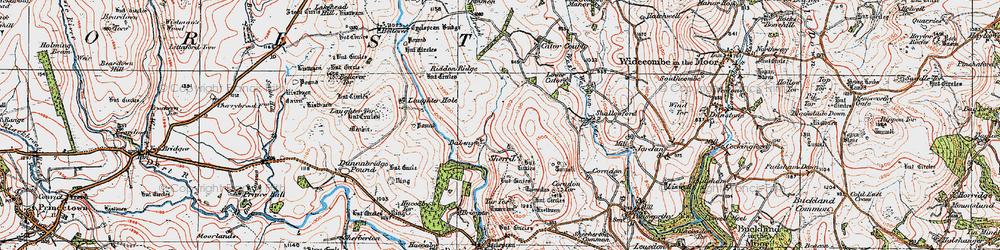 Old map of Yar Tor in 1919