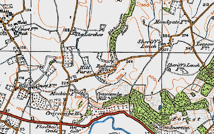 Old map of Badger's Hill in 1919