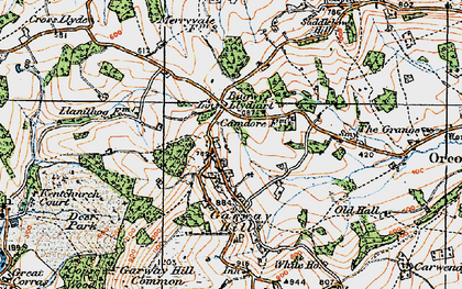 Old map of Bagwyllydiart in 1919
