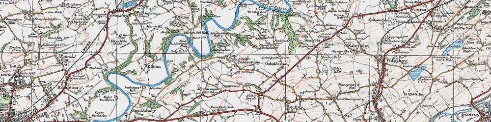 Old map of Willwife Wood in 1924