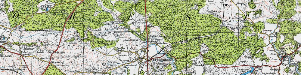 Old map of Whitley Wood in 1919