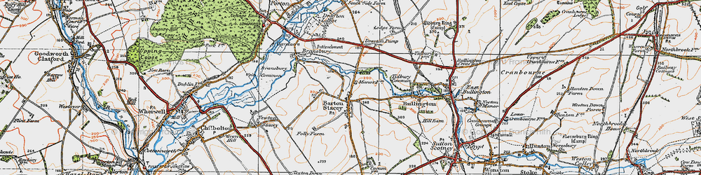 Old map of Tidbury Common in 1919