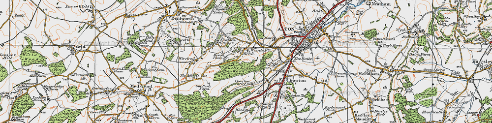 Old map of Ackender Wood in 1919