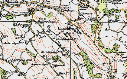 Old map of Bellingdon in 1920