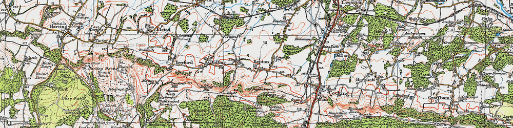 Old map of Bepton in 1919