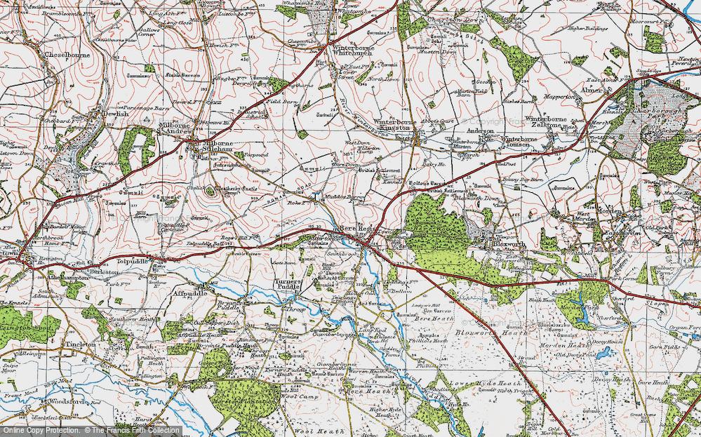 Old Map of Bere Regis, 1919 in 1919