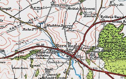 Old map of Bere Regis in 1919