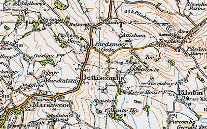 Old map of Bettiscombe in 1919