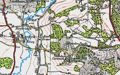 Old map of Bewley Common in 1919