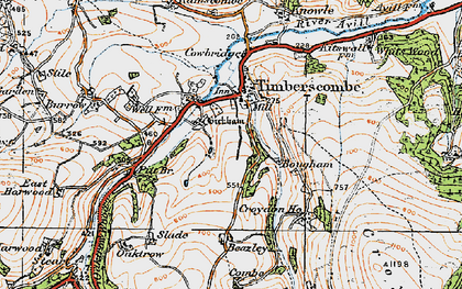 Old map of Allercott in 1919