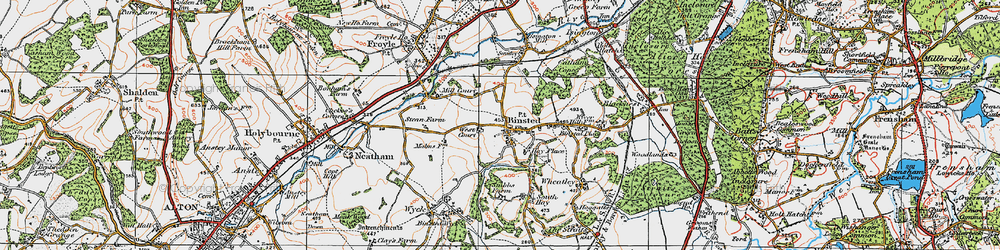 Old map of Binsted in 1919