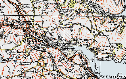 Old map of Bissom in 1919