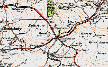 Old map of Wistlandpound in 1919