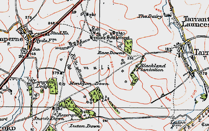 Old map of Blandford Camp in 1919