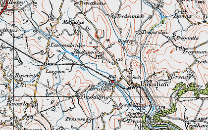 Old map of Bodiggo in 1919