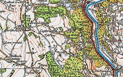 Old map of Wyes Wood Common in 1919