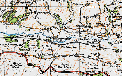 Old map of Wester New Moor in 1919