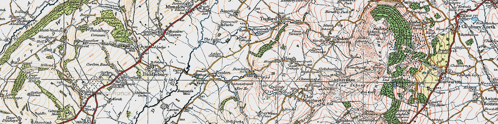 Old map of Wynett Coppice in 1921