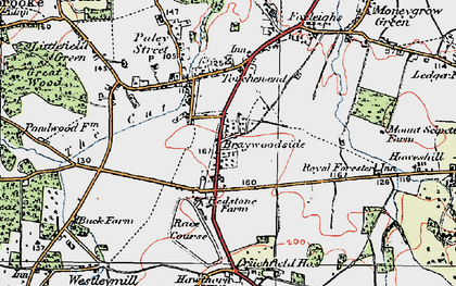 Old map of Braywoodside in 1919