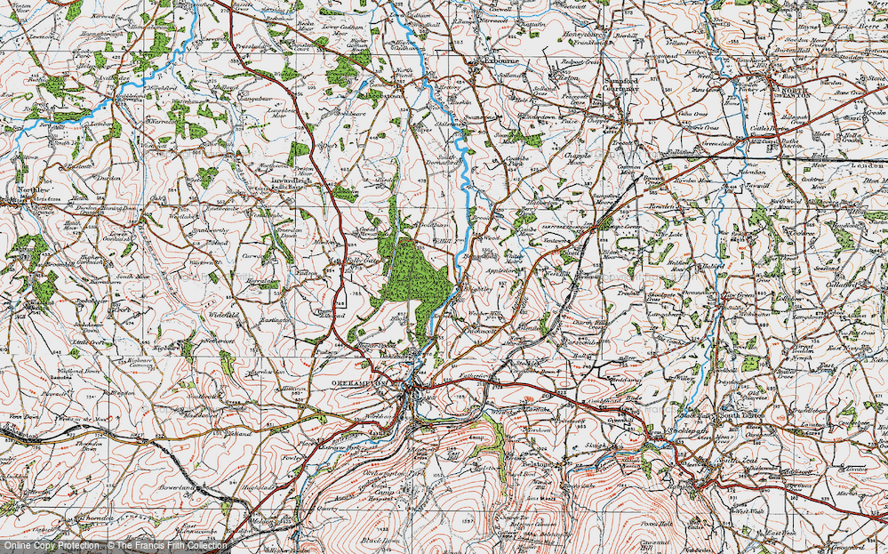 Old Map of Historic Map covering Abbeyford Woods in 1919