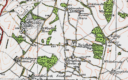 Old map of Brightwalton in 1919