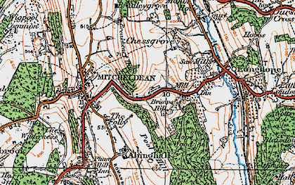 Old map of Abenhall in 1919