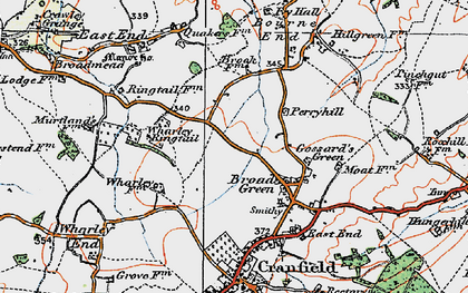 Old map of Broad Green in 1919