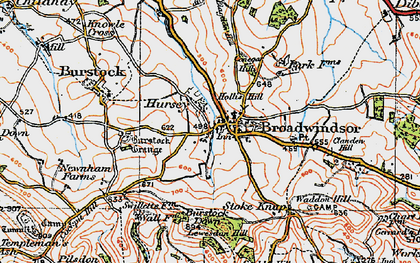Old map of Lewesdon Hill in 1919