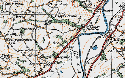 Old map of Bronydd in 1919