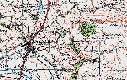 Old map of Alder Carr Wood in 1925