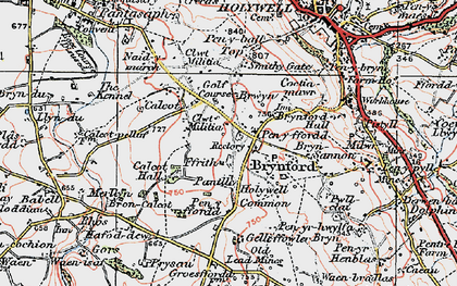 Old map of Brynford in 1924