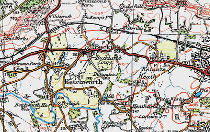 Old map of Buckland in 1920