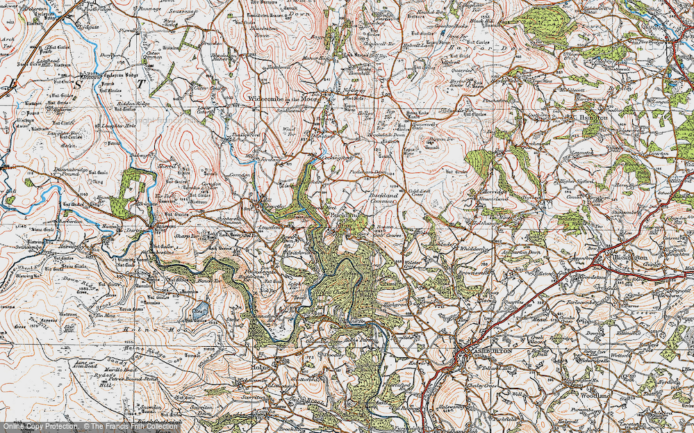 Old Map of Historic Map covering Ausewell Wood in 1919