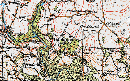 Old map of Ausewell Wood in 1919