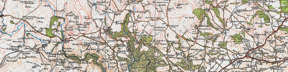 Old map of Buckland in the Moor in 1919