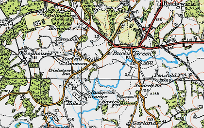 Old map of Bucks Green in 1920