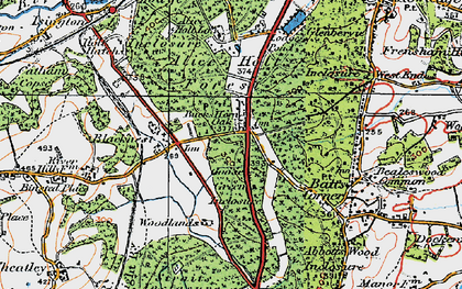 Old map of Alice Holt Forest in 1919