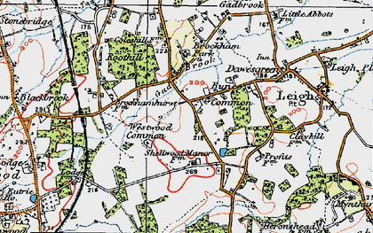 Old map of Bunce Common in 1920