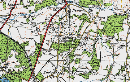Old map of Adbury Park in 1919