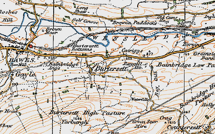Old map of Bainbridge Ings in 1925