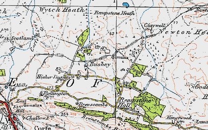 Old map of Wytch Heath in 1919