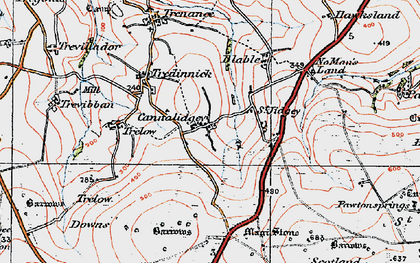 Old map of Cannalidgey in 1919